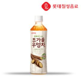 【ロッテ】ごぼう茶500ml